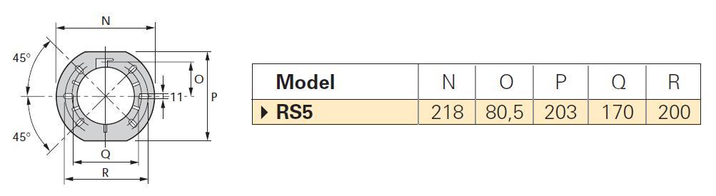 Riello-fl-RS5